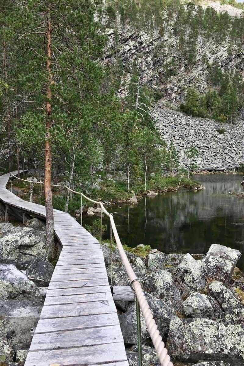 Easy Lapland Walking Day Trip near Rovaniemi