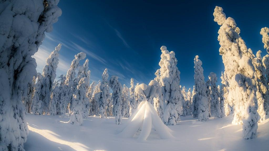 Lapland holidays offer snowy winters, freezing temperatures and magical fell views.