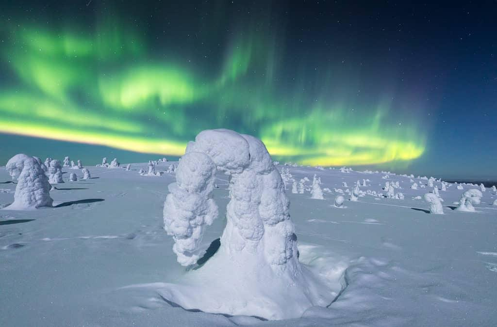 Lapland Holidays: A Local's Guide to Help Plan Your Dream Trip!