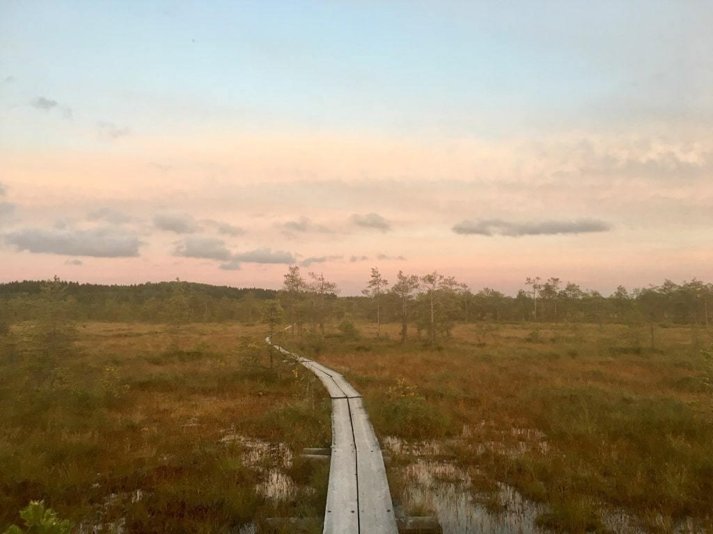 Things to do in Lahti! Get creative and visit a Finnish swamp