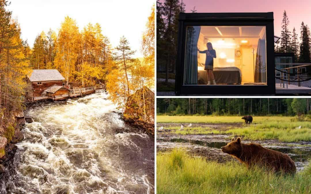 Oulanka National Park + must do things in Ruka Kuusamo, Lapland