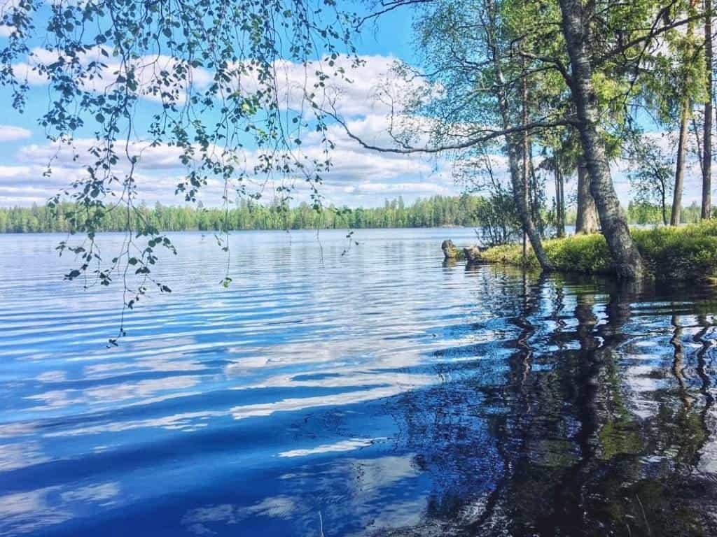 Summer in Finland is lush and full of beauty of the nature.
