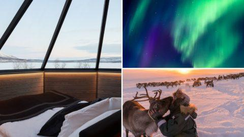 TOP 5 Dreamiest Glass Igloos in Finland + Tips for Booking