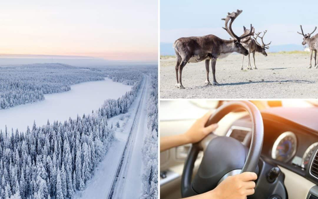 Driving in Finland Even If You're Unsure & Don't Know Finnish Winter
